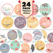 Monthly Baby Stickers - Huge 24 Pack of Baby Girl Onesie Belly Stickers. Includes 12 months, 1st year milestones & first holidays. Perfect baby shower & newborn birthday gift.