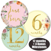 Baby Girl Gold Floral Monthly Stickers - Great Shower Registry Gift or Scrapbook Photo Keepsake