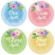 PAMBO Monthly Baby Stickers | Waterproof Milestone Newborn Boys & Girls Flower Stickers | Perfect for Celebrations / Photo Keepsake / Baby Shower Gift Idea | 16in1