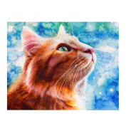 Fabal 5D Embroidery Paintings Rhinestone Pasted DIY Diamond painting Cross Stitch