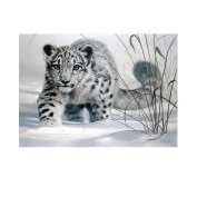 Diamondo Snow Leopard Cross Stitch Kits 5D Diamond DIY Painting Kit Home Decor Craft
