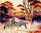 Dorara DIY Oil Painting Paint By Number Hand Paintworks 16×50cm Giraffe and Zebra