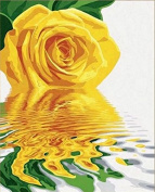 Dorara DIY Oil Painting Paint By Number Hand Paintworks 16×50cm Yellow Rose