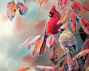 Dorara DIY Oil Painting Paint By Number Hand Paintworks 16×50cm bird