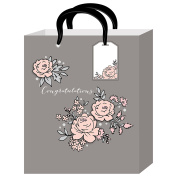 American Crafts Gift Bags 12 x 25cm x 13cm Congratulations with Tags