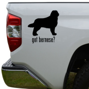 Got Bernese Mountain Dog Pet Die Cut Vinyl Decal Sticker For Car Truck Motorcycle Window Bumper Wall Decor Size- [8 inch/20 cm] Tall Colour- Gloss White