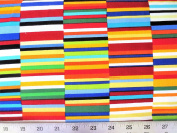 Colorworks Concepts Colourful Stripes Northcott Cotton Fabric 21562-44