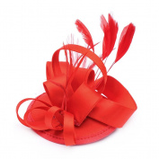 NUOLUX Women's Feather Fascinator Hat Clip on Wedding Party Hair Accessory