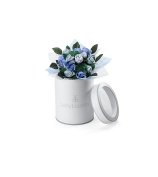 Babyblooms Hand Tied Posy, Blue