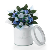 Babyblooms Hand Tied Bouquet, Blue
