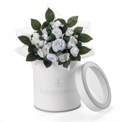 Babyblooms Hand Tied Bouquet, White