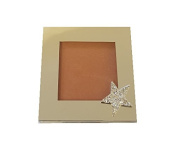 FAMOUS Cream Blusher 'Shirley Copper'