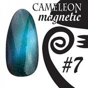 Chameleon Magnetic Colour UV Gel – Magnetic – # 007