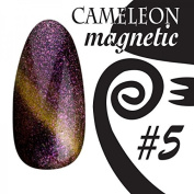 Chameleon Magnetic Colour UV Gel – Magnetic – # 005