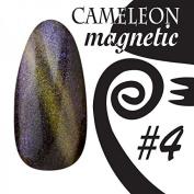 Chameleon Magnetic Colour UV Gel – Magnetic – # 004