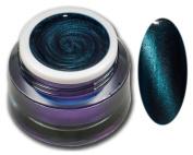 Premium Cat Eye Magnet RM Beauty Nails Nail Design Trend Nail Art UV Gel