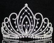 Janefashions Blossom Pageant Rhinestone Crystal Tiara Crown w/ Hair Combs Bridal Prom T1294