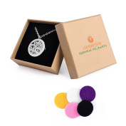 Clementine Essential Oil Jewellery Diffuser Aromatherapy Necklace Stainless Steel Locket 60cm Chain