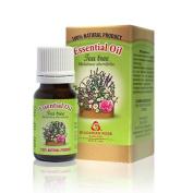 Pure Therapeutic Tea Tree Essential Oil 10 ml 0.33 oz 100% Undiluted