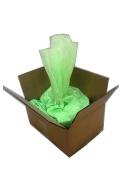Holi Colour Powder | Celebration Powder | Neon/Afterdark Green | Bulk 11kg.