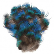 WAKEACE 50pcs/set DIY Peacock Blue Pheasant Plumage Feathers for Craft Trimmings Decor DIY Headdress Decorative Sewing Crafts Supply