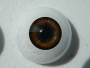 24mm Pair of Realistic Life Size Acrylic Half Round Hollow Back Eyes for Halloween PROPS, MASKS, DOLLS or Bears FB01