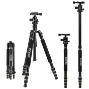 Zomei Q666 Magnesium Aluminium Alloy Portable Professional Tripod 4-Section Centre Column Adjustable Monopod With 360º Quick Release Ball Head and Ball Head Pocket Light weight Compact Travel for Nikon Canon Sony All DSLR and Digital Camera