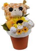 New Baby Flower Pot Gift Set