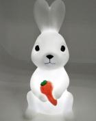Led Lovely Night Lights Creative Rabbit Fox Owl Lamp Silicone Baby Doll Bedroom Bedroom Desk Lamp