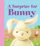A Surprise for Bunny [Board book]