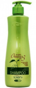 Iden Plant Omega 3 Shampoo