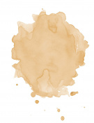 Studio 78 Paris - All Natural & Organic Bi-Phased Foundation (We Revitalise)