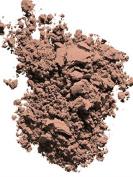 Radiant Powder Foundation SPF 23 Compact Refill10ml Wb20