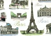 Tassotti City of Paris Decorative Wrap Paper 2 Full Sheets 70cm x 100cm