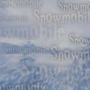 Snowmobile 30cm x 30cm Scrapbook Paper - 1 Sheet