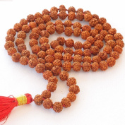 Rudraksha Japa Mala 108 + 1 Beads Best Quality Prayer Beads
