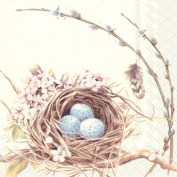 Boston International 40 Count 3-Ply Paper Cocktail Napkins, Birds Nest with Eggs