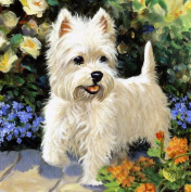 ESOOR 5D DIY Diamond Painting, Cross Stitch DIY Diamond Painting Kits Arts Little White Dog 30cm X 30cm