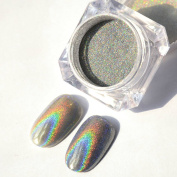 Shining Laser Silver Nail Powder Holographic Nail Glitter Dust Rainbow Chrome Pigment Manicure Pigments Nail Art Decorations 2 Gramme/1 Jar By GADGETS ENTREPOT