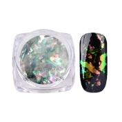 Nail Sequins,Enjocho 0.2g Nail Art Gorgeous Chameleon Mirror Powder Manicure Chrome Pigment Glitters