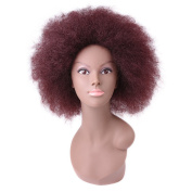 Miss Rola New Style Kanekalon Fibre Short Afro Curly Replacement Hair Wigs For Black Women Full Machine Made None Lace Daily Wearing #99J
