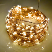 LightsEtc 200 LED String Light 20m Copper Wire Warm White Waterproof Light 8 Modes Remote Control