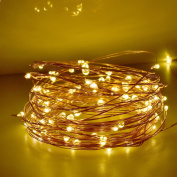 LightsEtc 2 Pack 100 LED String Lights Copper Wire 10m Warm White Light 8 Modes Remote Control