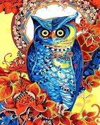 Prime Leader Wooden Framed Diy Oil Painting, Paint by Number Kit 41cm x 50cm T1346 Colourful Owl