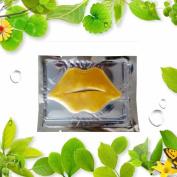 Fullfun Collagen Lip Coat Lip Balms & Moisturisers Lip Coat
