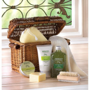 Body Care Gift Set, Healthy Holiday Family Gift Baskets, Healing Spa Bath Basket