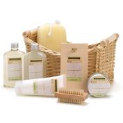 Bath Spa Set, Birthday Gift Baskets For Her Lemongrass Eucalyptus Spa Basket