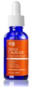 Seoul Ceuticals Korean Skin Care - 20% Vitamin C E Ferulic Serum + Hyaluronic Acid + Ferulic Acid + Vitamin E, Provides Potent Anti Ageing, Anti Wrinkle Results. 30ml