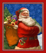 Santa Claus Is Coming To Town Digital Panel Northcott Cotton Fabric DP21692-24