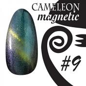 Chameleon Magnetic Colour UV Gel – Magnetic – # 009